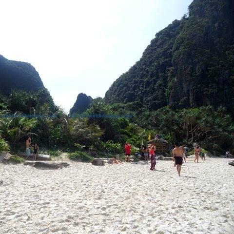 Phi Phi islands - Phuket snorkeling